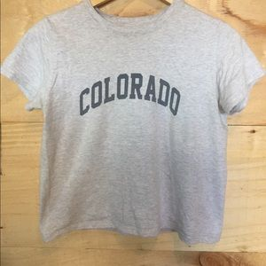 Gray Brandy Melville Colorado tee